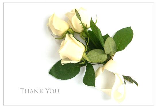 طيور لبادجي Thank-you-card-01
