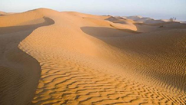 AAR PERISNO Sabias-que-el-desierto-arabe-antes-era-una-selva-exuberante-d8ea4
