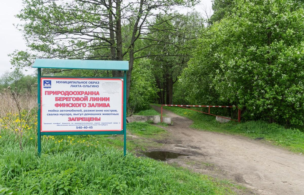 Из зеленого оазиса в промзону: что станет с МО «Лахта-Ольгино» после переноса в район «АБЗ №1» DSC07509