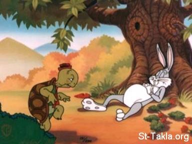 الجزيرة و العربية  Www-St-Takla-org--The-Tortoise-and-the-Hare