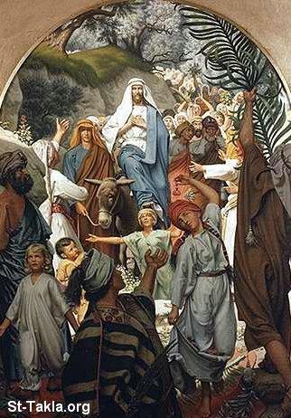 صور من حياة المسيح يارب تعجبكم Www-St-Takla-org___Palm-Sunday-06