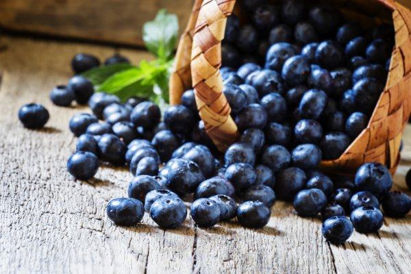 Il Bambino dipinto sul muro Depositphotos_122088482-stock-photo-blueberries-in-a-wicker-basket
