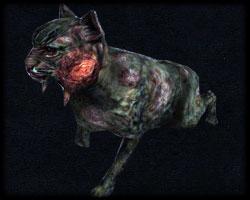 Bestiariusz Kot