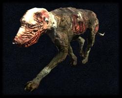 Bestiariusz Pies