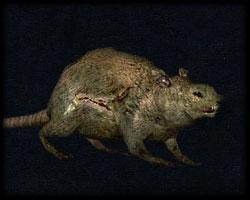 Bestiariusz Wilczyszczur