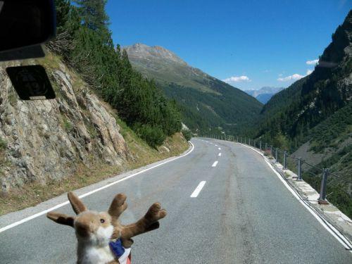 Petit tour en Suisse Artfichier_263507_1284838_201210072628733