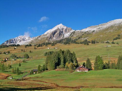 Petit tour en Suisse Artfichier_263507_1284986_201210075603377
