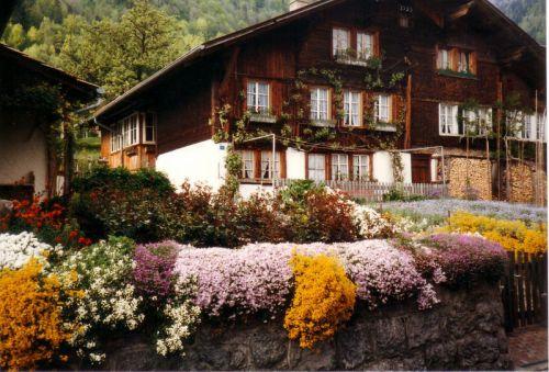 Petit tour en Suisse Artfichier_263507_1284993_201210075704860