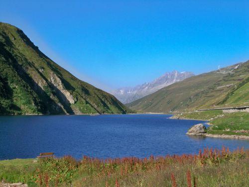 Petit tour en Suisse Artfichier_263507_1285025_20121007023869