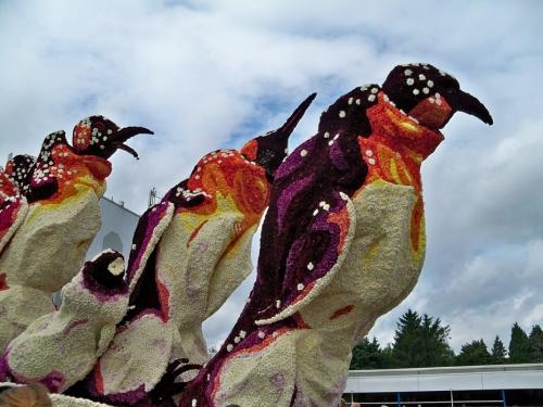 Corso fleuri de Lichtenvoorde (Pays Bas) Artfichier_263507_2801095_201310021627944