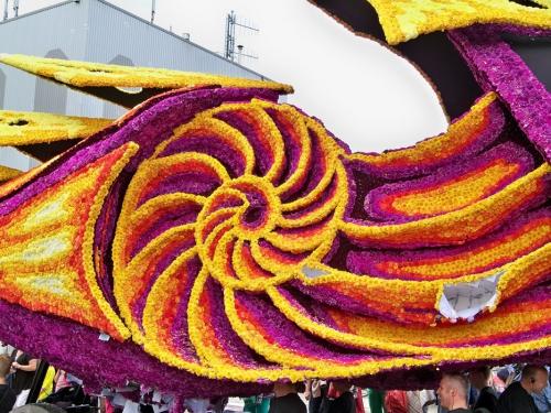 Corso fleuri de Lichtenvoorde (Pays Bas) Artfichier_263507_2801137_201310022316810