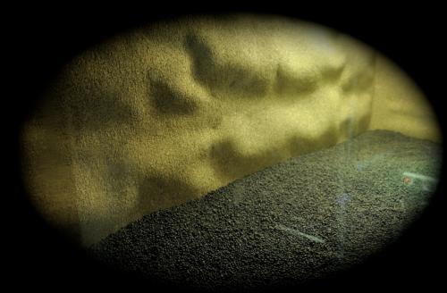Le terrarium semi-humide /Humide Artfichier_347308_4430000_201501044141931