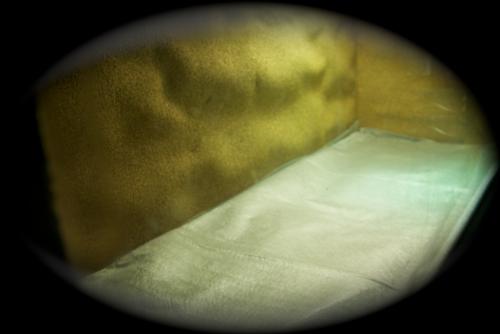 Le terrarium semi-humide /Humide Artfichier_347308_4430005_201501044243657