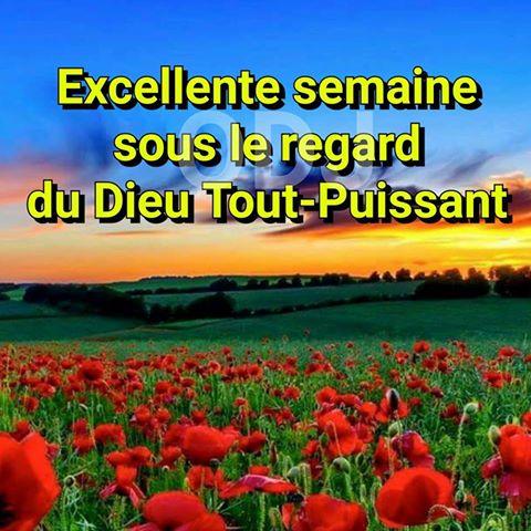 Message a tous les membres du Forum pour la vie du Forum Artfichier_743114_5592401_201604042734612