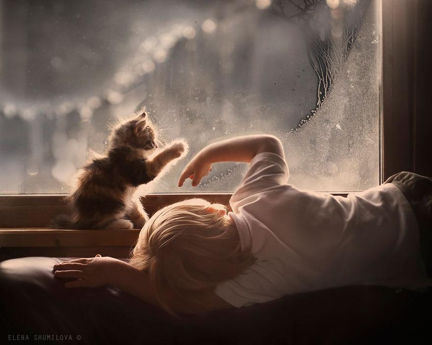 Someone  imagined it ... I like what he did  - Page 6 Animal-children-photography-elena-shumilova-2-42