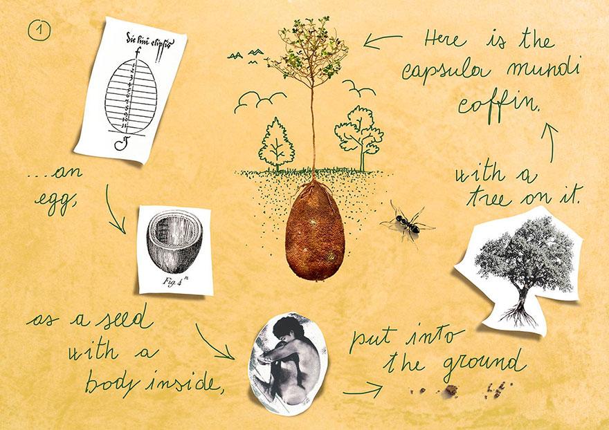 Choses diverses et variées que vous voulez partager ! - Page 19 Biodegradable-burial-pod-memory-forest-capsula-mundi-3