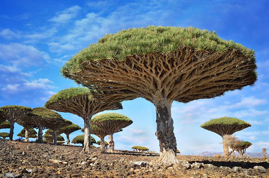 30 lieux incroyables semblant provenir d'une autre planète Alien-places-look-like-other-worlds-22__880