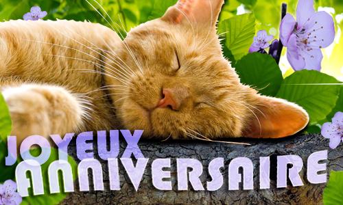 Joyeux anniversaire Kimiki Chan Cc_cf_120023