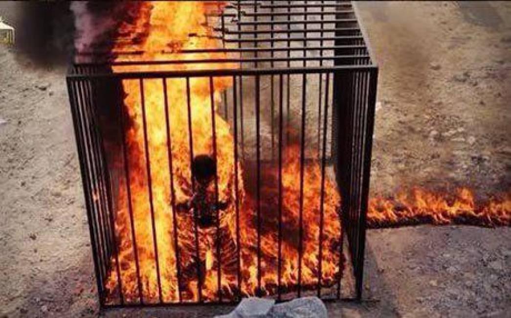 Che cosa stai pensando adesso n° 3 - Pagina 4 Muadh-al-kaseasbeh-pilota-giordano-arso-vivo-isis-10-638199