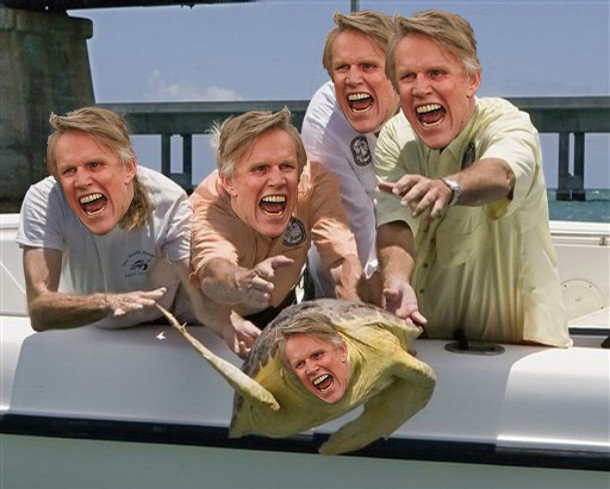The Busey thread!! Funny_eec8f8_888907