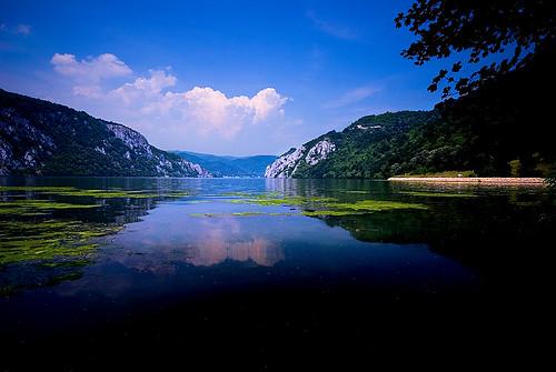 """Stalna postavka slika ~ """"Dunav"""" - Page 2 756455663_4241011f00"""