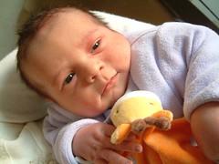 Enfants, grossesse, bibous et photos 100000307_4a125f823e_m