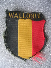Besoin de renseignements sur la Légion Wallonie!!! 253118053_61540102c9_m