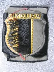 Besoin de renseignements sur la Légion Wallonie!!! 253118060_5195a27f5a_m