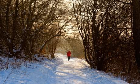 Foto e Ditës - Faqe 7 A-winter-walk-010