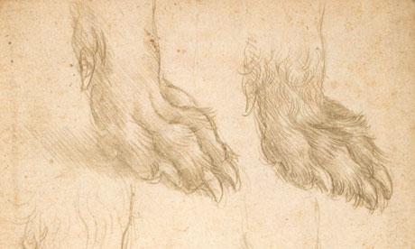 Dogs Leonardo-da-Vincis-Studie-007