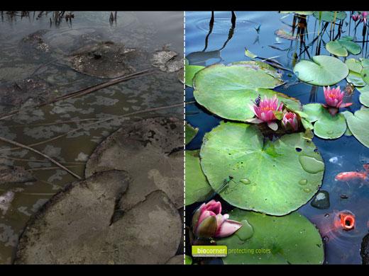 Imagenes para concientizar sobre la naturaleza  Adverts-for-the-environme-015