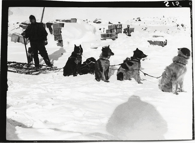 The literature of polar exploration An-image-from-The-Lost-Ph-005