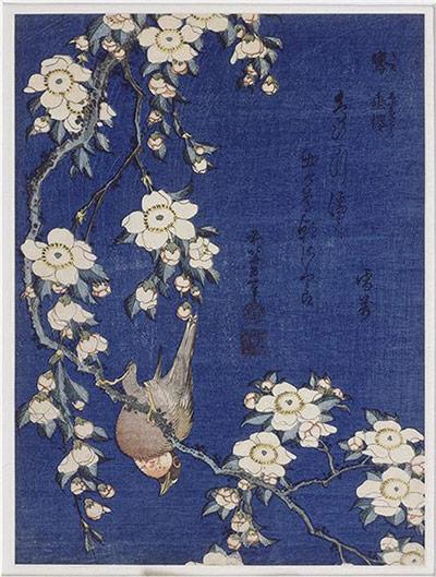 Flower paintings Bullfinch-on-Weeping-Cher-007