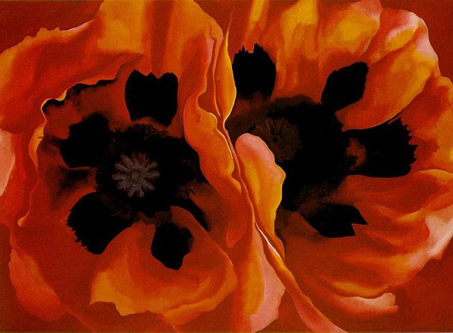 Flower paintings Oriental-Poppies-by-Georg-009