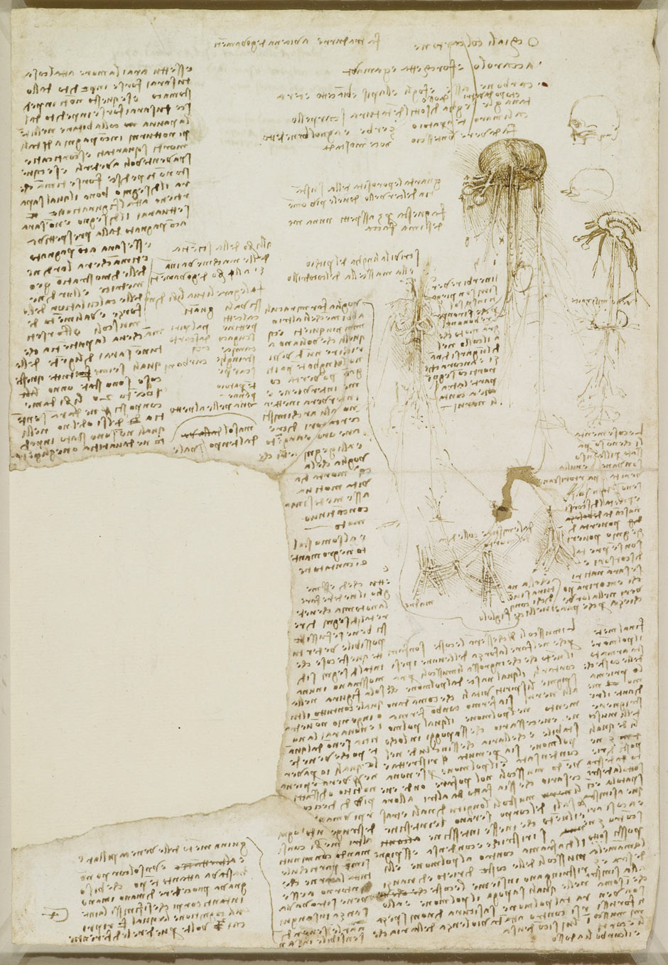 Leonardo, the Turin Shroud and the Mona Lisa A-page-from-Leonardo-da-V-001