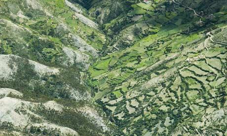 Etat d'urgence dans la forêt péruvienne Amazon-rainforest-Peru.-010