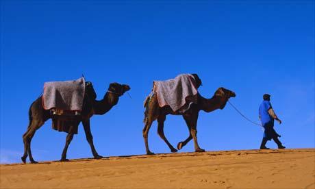 Maroko - Page 5 Morocco4