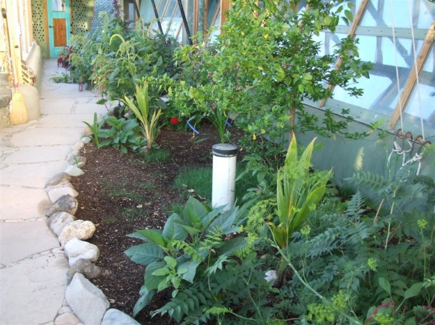 10 Reasons Why EarthShips Are F!#%ing Awesome Phoenix_blackwater_planters1-625x468