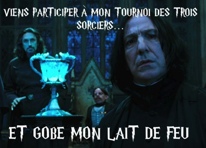 Images insolites - Page 3 Drague-harry-potter-8
