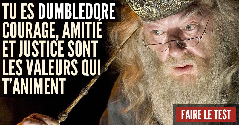 [Test] Quel personnage d'Harry Potter es-tu? Dumbledore-1