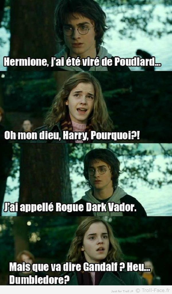 Les Special Dédicaces. - Page 3 Harry-potter-3