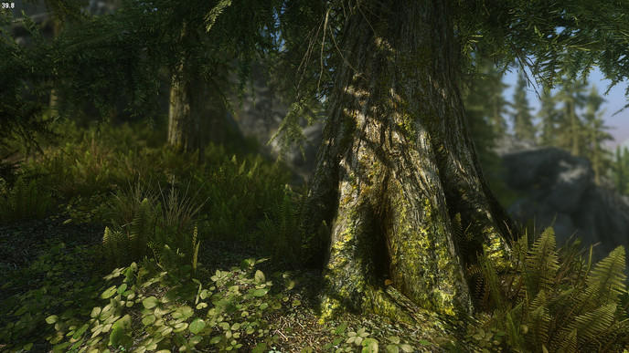 Zone 42 : Le plus beau Skyrim de la Terre (lien de téléchargement) W_mahesdd