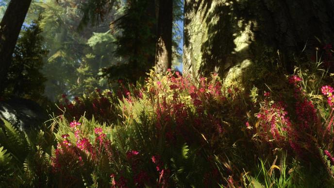 Zone 42 : Le plus beau Skyrim de la Terre (lien de téléchargement) W_ooxeozr