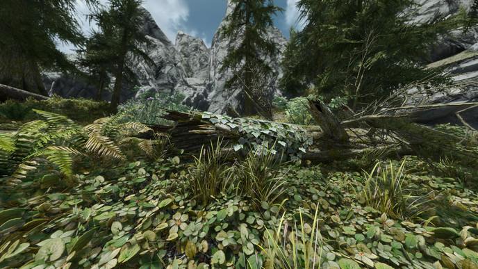 Zone 42 : Le plus beau Skyrim de la Terre (lien de téléchargement) W_zwrlfod