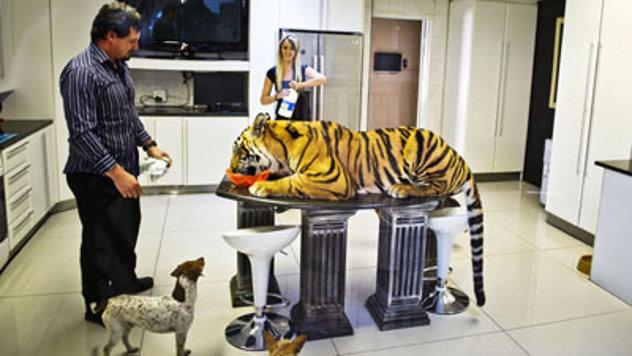 Južnoafrički biznismen kupio bengalskog tigra kao ljubimca B_120516053