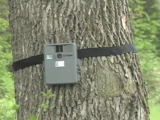 camera de chasse Wildview-ez-cam-1