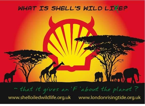Shell et le delta du Niger P05_ShellWildLieFinal_600_x_600