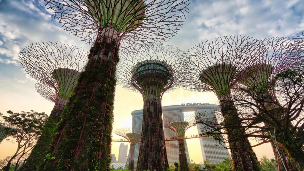 [Jeu] Association d'images - Page 19 Supertrees-singapore-1024x576