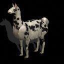 La Llama que fue asesinado por La exterminadora 500946589880