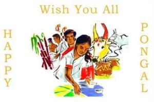 черепахаальбинос - Шри - Ланка. Отдых в Шри-Ланке. Все о Шри-Ланке. Фото, видео.  300px-Happy_Pongal